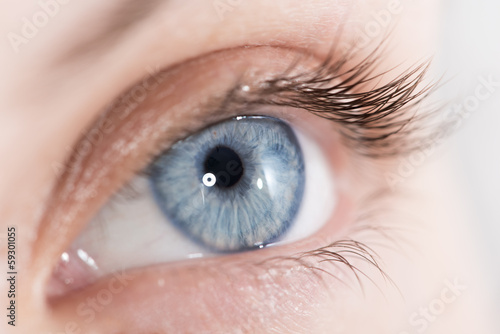 Closeup shot of a beautiful woman eye