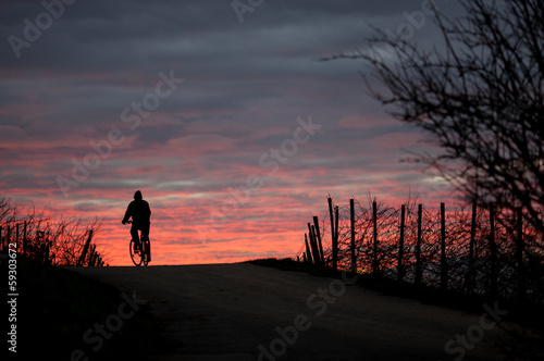 cyclist in sunset