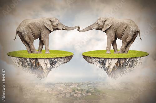 kochajace-slonie-na-zawsze-razem-koncepcja-milosci