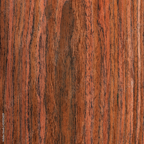 texture wenge tree, wood grain