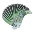 100 PLN fan