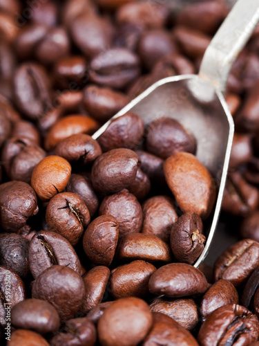 silver spoon scoops roasted coffee beans