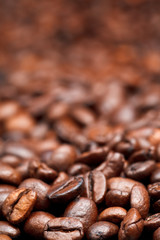 light roasted coffee beans background