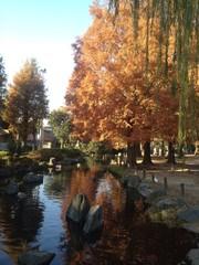 東京の足立区内の公園