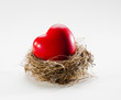 love nest for long-life happiness