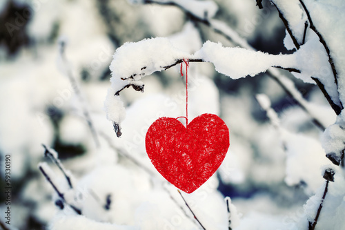 Heart on snow-covered forest bush