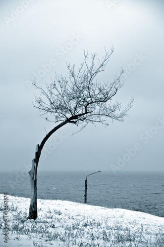 Leinwandbild Motiv Two on the snow