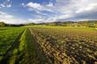 canvas print picture - zwischen den Feldern