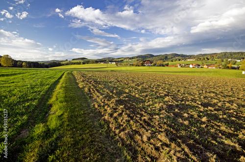 canvas print picture zwischen den Feldern
