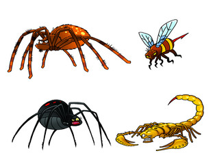 Collection of poisonous insects. Tarantula, black widow, scorpio