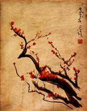 Sakura, fleurs de cerisier prune peinture chinoise