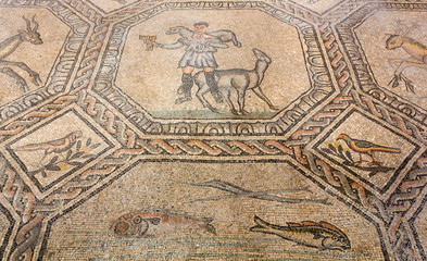 Ancient Floor Mosaic in the Basilica of Aquileia, Italy
