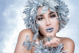 Beauty Party girl with Silver Stylism. Magic Winter Woman