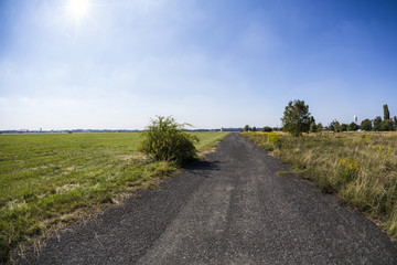 little road leading to the horizon with meadow around