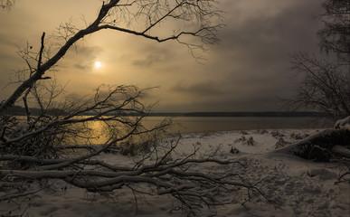 lake coast in the winter