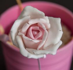 cake pops rosa cake design pasta di zucchero