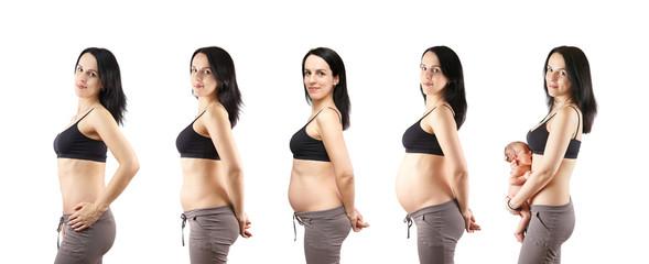 The pregnancy.