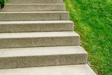 Stone stairs in a garden garden