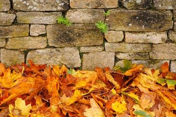 Hintergrund Bruchsteinwand im Herbst