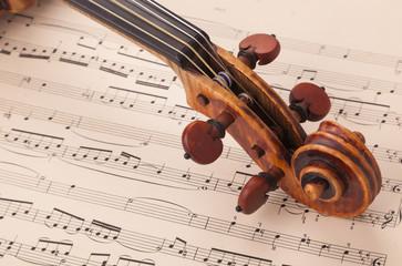 Riccio sopra spartito musicale