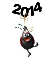 coccinella 2014