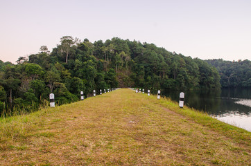 Pang-ung, Pine forest in Thailand.