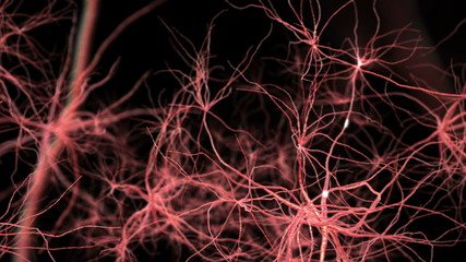 Neurone synapse network. 3D animation.