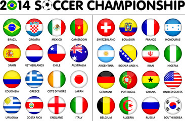Soccer Championship 2014 Flags