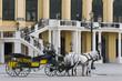 Fiaker vor Schloss Schönbrunn Wien