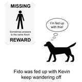 Kevin went missing again cartoon