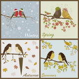 Birds  in four seasons- spring, summer, autumn, winter