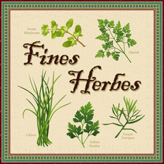 Fines Herbes, Marjoram, Chervil, Chives, Parsley French Tarragon