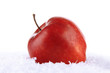 Red apple in snow isolated on white