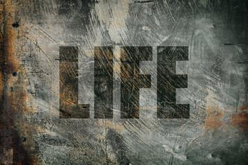 grunge life