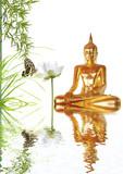 Fototapety bouddha doré, lotus, bambou et papillon
