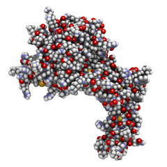 Human activated protein C (APC, drotrecogin alfa)