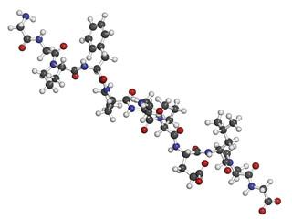Gliadin derived peptide. Immunogenic gluten breakdown product