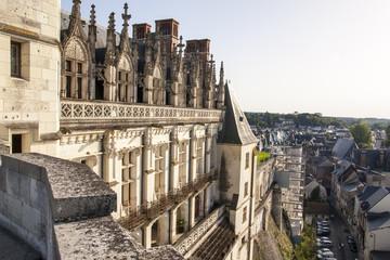 Castello di Amboise - Loira