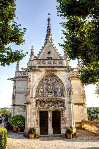 Castello di Amboise - Loira  - 59390059