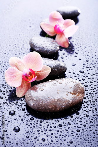 Composition with beautiful blooming orchid with water drops and - 59392649