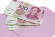 Money in pink envelope for Chinese New Year
