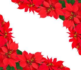 christmas frame from poinsettias