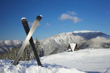Ski equipments