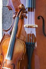 string instruments at sabatini garderns