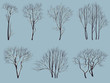 Silhouettes of trees without leaves with snow.