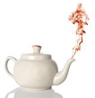 Tea Pot and Steam