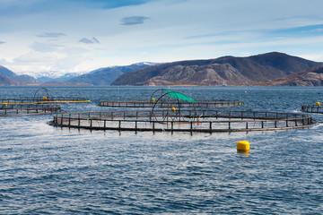 Norwegian fish farm for salmon growing in open sea water