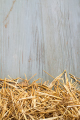 hay against a blue wooden wall