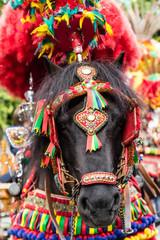 Traditional sicilian colors