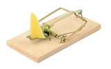 Mousetrap with a piece of cheese on white background